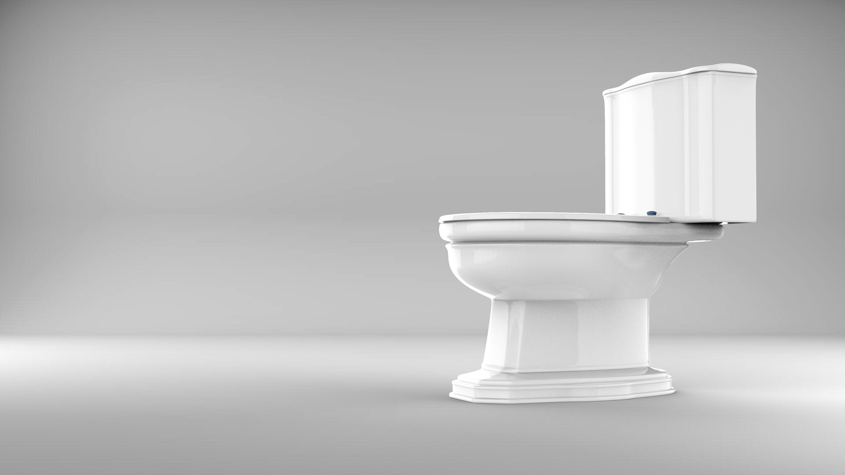 Two-Piece Toilet